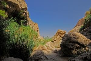 EinGedi_Nature Reserve (37)